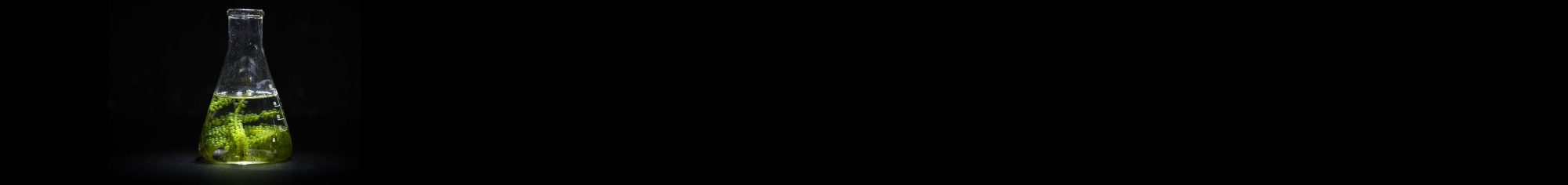 BioMotive
